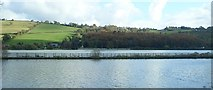 J1022 : The Newry Greenway on the Middlebank by Eric Jones