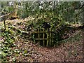 SK6465 : Rufford Abbey Country Park – small ice house by Alan Murray-Rust