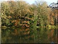 SK6465 : Rufford Abbey Country Park – Rufford Lake by Alan Murray-Rust