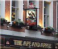 SJ8398 : Sign of The Ape & Apple by Gerald England