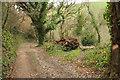 SX7448 : Track above Torr Brook by Derek Harper