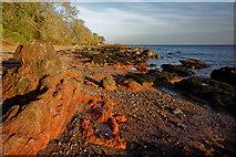 NH7358 : Red rocks at Rosemarkie by Julian Paren