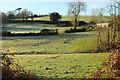 SS9727 : Pastures near Skilgate by Derek Harper