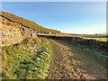 SD6975 : Twisleton Lane near Ingleton by David Dixon