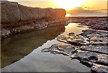 SS9168 : Limestone shelf by Alan Hughes
