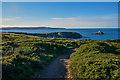 SW5943 : Gwinear-Gwithian : South West Coast Path by Lewis Clarke