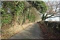 SP8600 : Hangings Lane by Des Blenkinsopp
