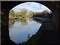 SO8171 : Bridge on the Staffordshire and Worcestershire Canal by Philip Halling