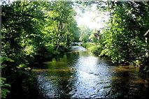 TQ2668 : River Wandle at Morden Hall by Nigel Mykura