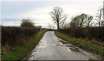 NO4801 : Ferry Road by Bill Kasman