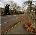 SO2316 : Cwrt-y-Gollen bus stop and shelter, Glangrwyney, Powys by Jaggery