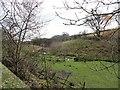 NZ0948 : Little valley at Middle Dene by Robert Graham