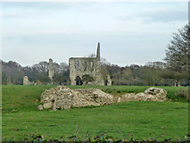 TQ0357 : Ruins of Newark Priory by Robin Webster