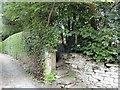 NZ0852 : Footpath entrance by Robert Graham