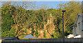 SX9064 : Cliff, Parkfield Road, Torquay by Derek Harper