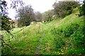 SO2585 : Offa's Dyke Path by Jeff Buck