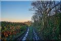 SS5022 : Huntshaw : Track by Lewis Clarke