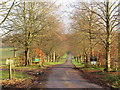 TQ4042 : Driveway to Greathed Manor, Dormansland by Malc McDonald