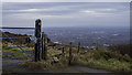 J3279 : Gate and stile near Belfast by Rossographer