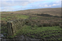 SD7224 : A View across the Valley of Tinkler's Brook by Chris Heaton