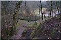SJ9820 : Footpath on Satnall Hills by Bill Boaden