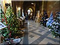 SO8454 : Christmas tree in the Cloisters by Philip Halling