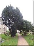 SP5214 : Cherwell  Churches Christmas chug through (42) by Basher Eyre