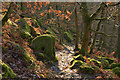SK2476 : Millstones in the Woods at Froggatt Edge, Derbyshire by Andrew Tryon