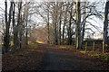 NO7797 : The Deeside Way in winter... by Bill Harrison