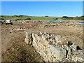 NY7766 : Vindolanda Roman settlement by Eirian Evans