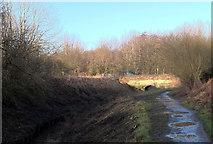 SJ8093 : Bridge over Chorlton Brook by habiloid