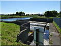 NS9081 : Forth and Clyde Canal overflow by Stephen Craven