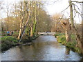 TQ2668 : River Wandle, Morden Hall Park by Malc McDonald