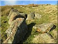 NT9510 : Rocks at Flint Crag below St David's Cairn by Andrew Curtis
