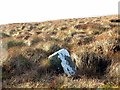 NT9511 : Boundary Stone below St David's Cairn by Andrew Curtis