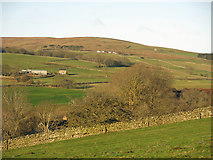 NY9539 : The lower Rookhope valley around Hole House by Mike Quinn