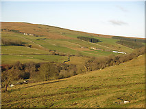NY9539 : The lower Rookhope valley around Hole House (3) by Mike Quinn