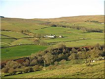 NY9539 : The lower Rookhope valley around Hole House (4) by Mike Quinn