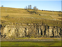 NY9539 : Harrowbank Quarry (disused) below Laverock Seat by Mike Quinn
