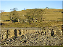 NY9539 : Harrowbank Quarry (disused) below High Farm (5) by Mike Quinn