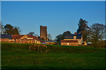 ST2214 : Otterford : Grassy Field by Lewis Clarke