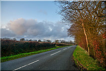 ST2113 : Churchstanton : Country Road by Lewis Clarke