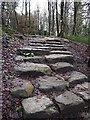 SK2679 : Stepped footpath by Graham Hogg