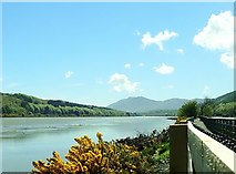 J1021 : The Estuary of the Newry River by Eric Jones