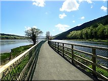 J1021 : View South along the Newry Greenway in the direction of Victoria Lock by Eric Jones