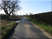 SE6959 : Minor road near to Pasture Farm by Peter Wood