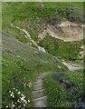 SN0541 : Steps along the Pembrokeshire Coast Path by Mat Fascione