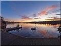 NC5806 : Little Loch Shin by valenta