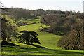SX9054 : Valley in Lupton Park by Derek Harper