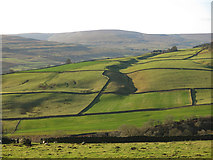 NY9539 : The lower Rookhope valley below Shepherd's House (2) by Mike Quinn